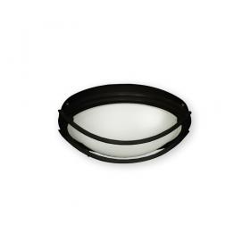 FL163 Ceiling Fan Light in Matte Black