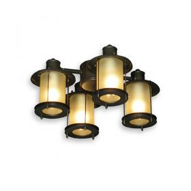 FL450 Ceiling Fan Light - Oil Rubbed Bronze Finish